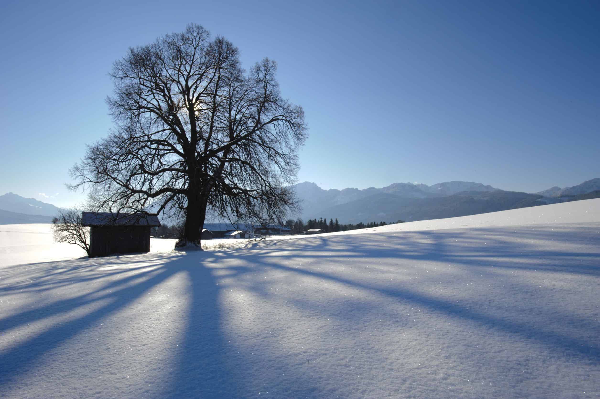 fotografia neve, esposimetro, esposizione