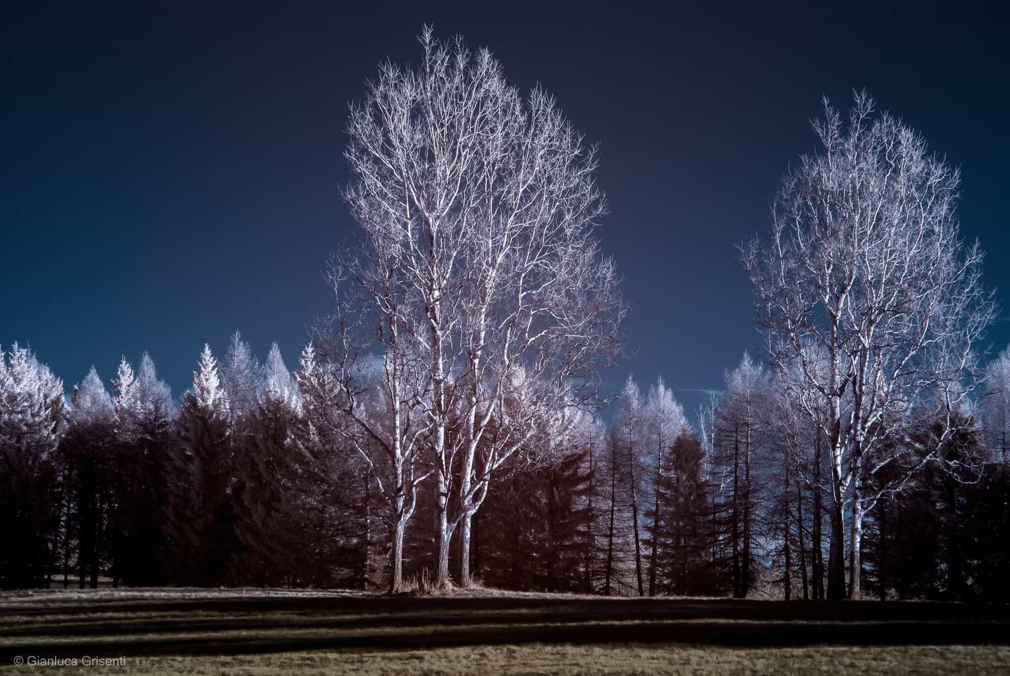 infrarosso, fotografia a infrarossi