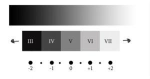 le zone medie di adams, ettr, sistema zonale