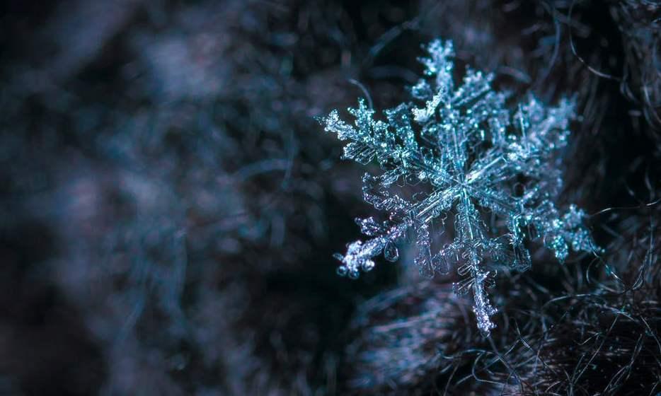 macrofotografia fiocco di neve