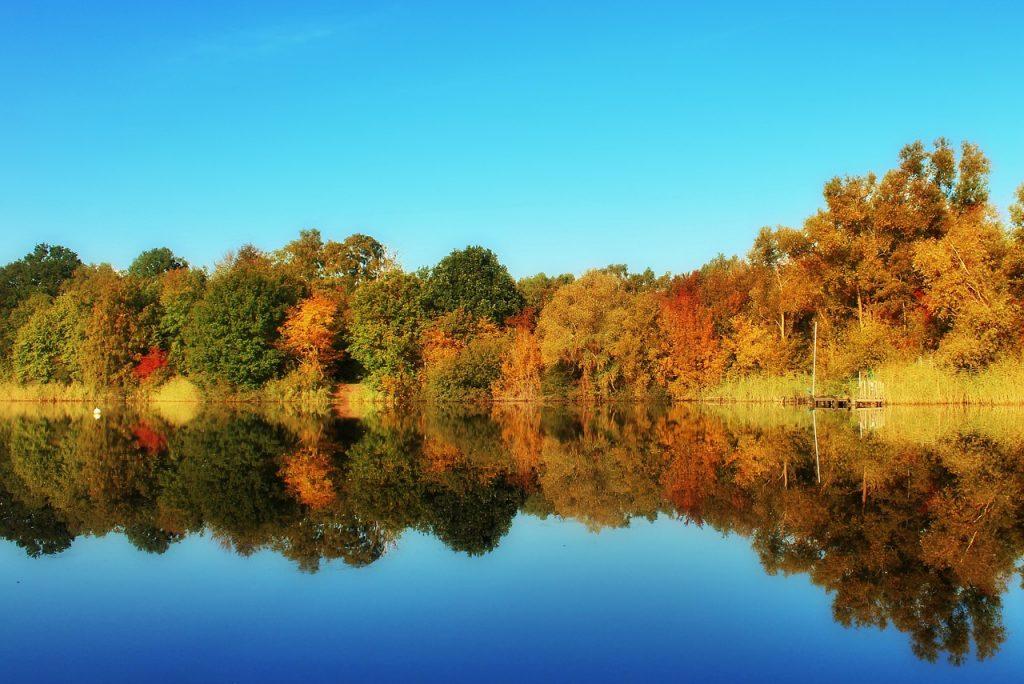 fotografare l'autunno