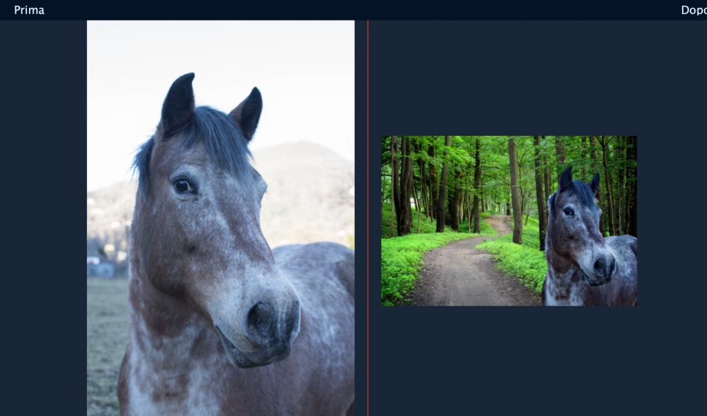 esempio di editing. Modificato lo sfondo a una foto di un cavallo
