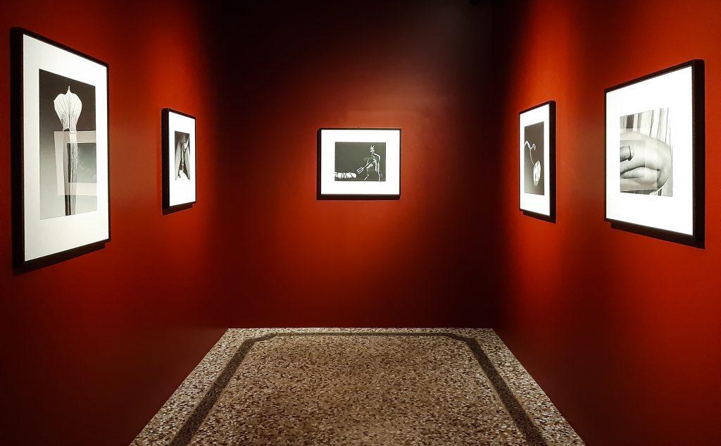 Mostra di Robert Mapplethorpe: Sala Rossa Galleria Corsini