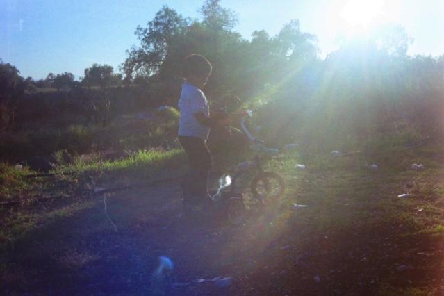 alex coghe bicicletta