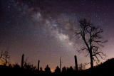Come fotografare la Via Lattea: consigli ed esempi