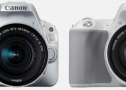 Canon EOS 200D: Recensione, Prezzo, Opinioni di Reflex-Mania