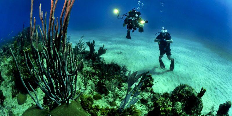 Migliore fotocamera subacquea 2018. Quale scegliere?