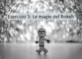 Esercizio fotografico 5: le magie del Bokeh