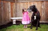 Pet Photography: 6 consigli per fotografare animali domestici