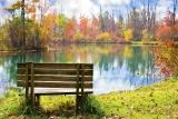 Fotografare l'autunno: segui i nostri consigli per ottenere foto magiche